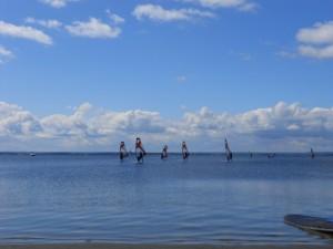 Regaty w Zatoce Puckiej