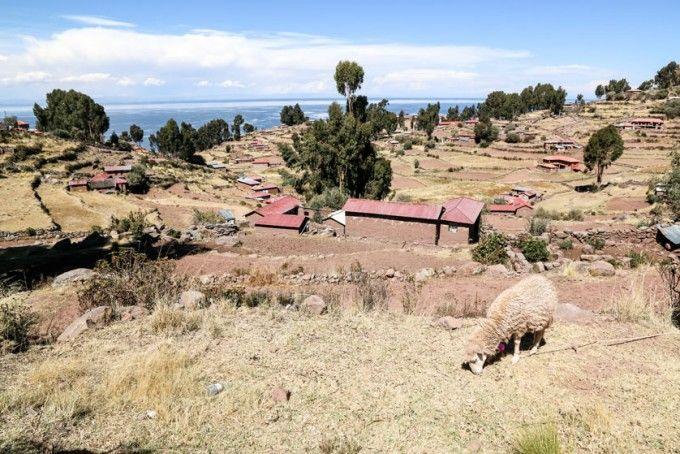 Wyspa Taquile na jeziorze Titicaca Peru