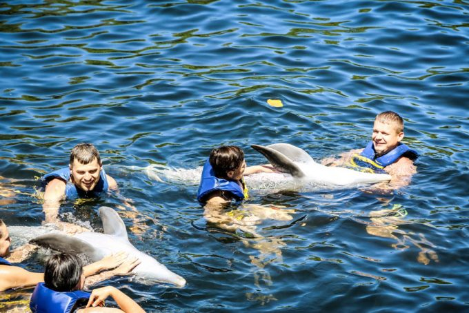 Delfiny Cienfuegos Kuba