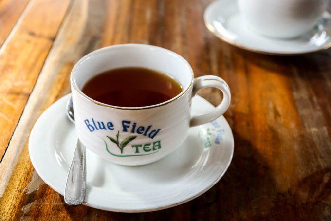 Fabryka herbaty Sri Lanka