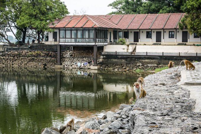 Polonnaruwa jezioro