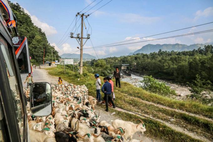 Nepal trekking do ABC droga do Nayapul