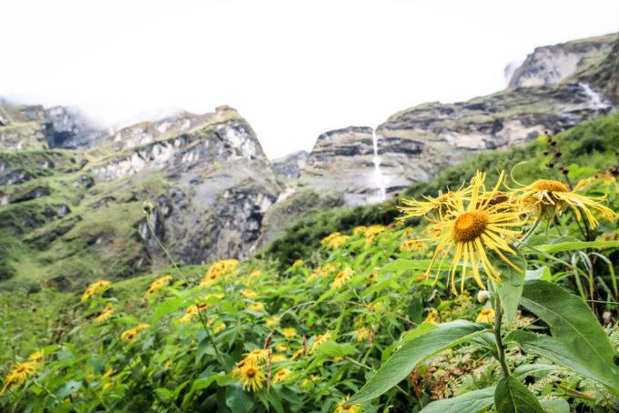 Nepal trekking do ABC wodospad przed Himalaya 2