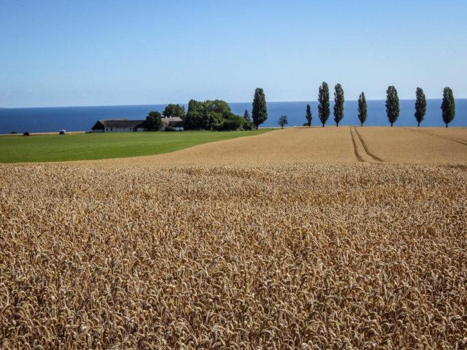 Bornholm pola i morze