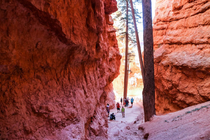Bryce Canyon trek Navajo Loop