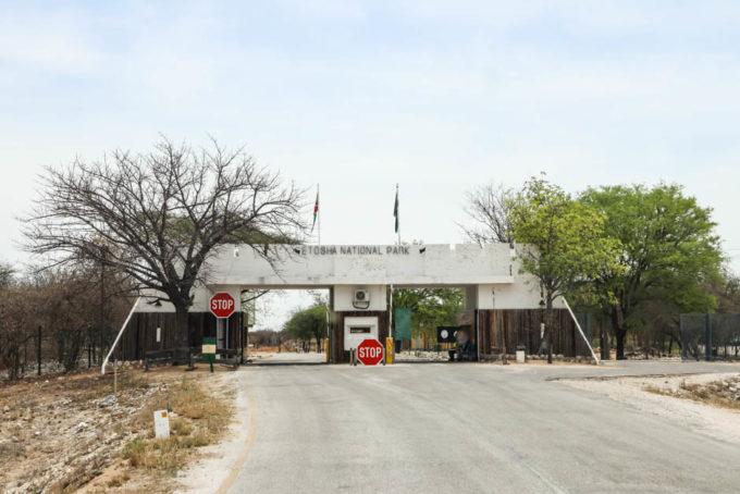 Safari w PN Etosha brama