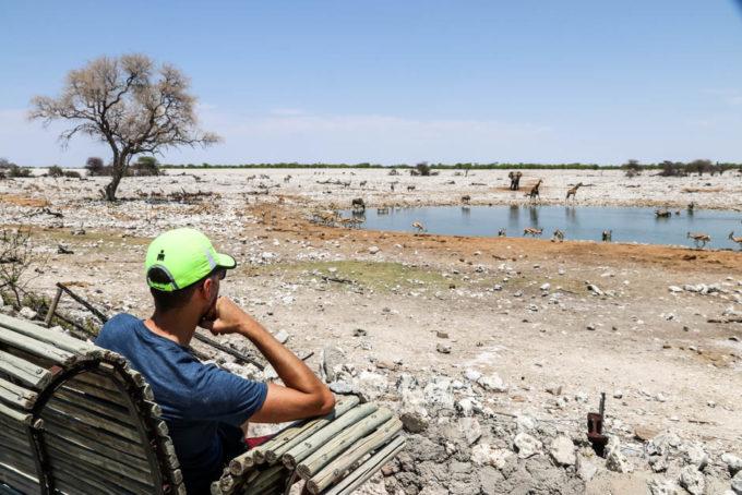 Safari w PN Etosha nad oczkiem w Okaukejo